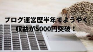 ブログ 5000円